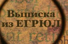 Как заказать выписку из ЕГРЮЛ/ЕГРИП в налоговой: что представляют собой выписки, как их получить