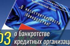 Закон о несостоятельности (банкротстве) кредитных организаций: о чем речь