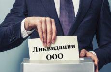 Банкротство ООО с долгами: подробная инструкция
