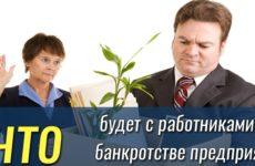 Увольнение при банкротстве предприятия: особенности процедуры