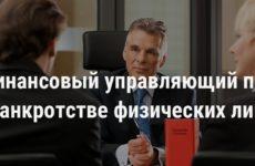 Финансовый управляющий при банкротстве физических лиц: его обязанности,