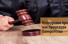 Как проходит конкурсное производство при банкротстве юридического лица