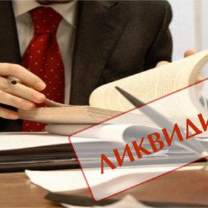 Банкротство ип с долгами по налогам: условия и сроки проведения процедуры