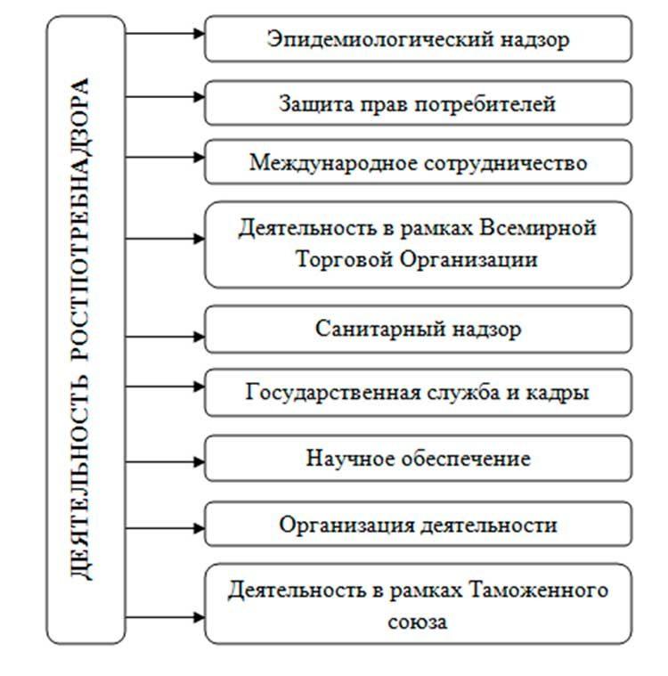 chto-proveryaet-rospotrebnadzor-v-magazine